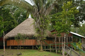 AMAZON JUNGLE CAMP